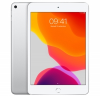 iPad mini 5 Wi-Fi +Cellular 64GB - ARGENTO