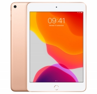 iPad mini 5 Wi-Fi +Cellular 256GB - ORO